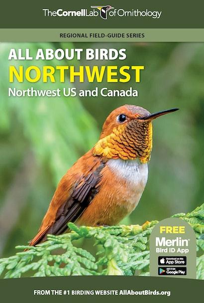 All About Birds Northwest