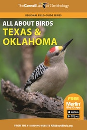 All About Birds Texas and Oklahoma