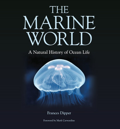 The Marine World