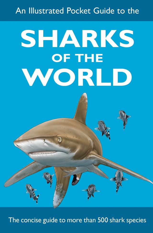 An Illustrated Pocket Guide to the Sharks of the World
