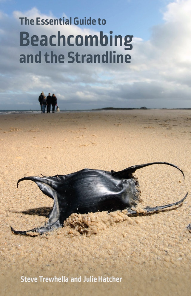 The Essential Guide to Beachcombing and the Strandline