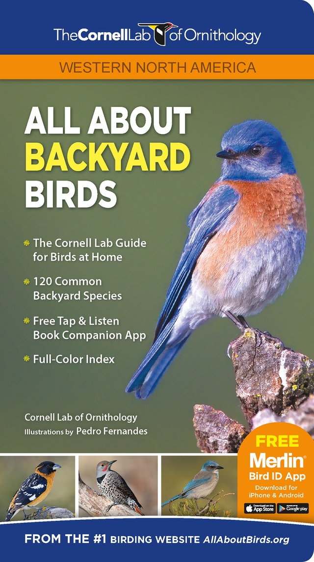 All About Backyard Birds- Western North America