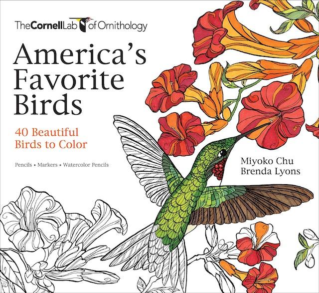 America's Favorite Birds
